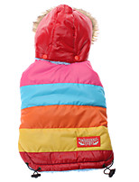 Rainbow Style Cotton Hoodie Coat for Dogs (Red,XS-XL)