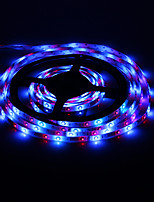 5M 18W 60x3528SMD RGB Light LED Strip Light with Remote Control (AC 85-265V)