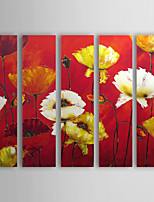 Hand Painted Oil Painting Floral Flower Sea with Stretched Frame Set of 5