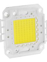 DIY 70W 5550-5600LM 2100mA 6000-6500K fraîche LED Module intégré de lumière blanche (30-36V)