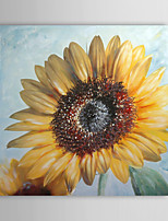 Hand Painted Oil Painting Floral Blooming Sunflower with Stretched Frame