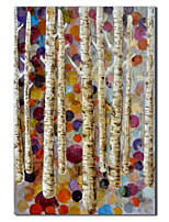 Hand Painted Oil Painting Botanical White Birch with Stretched Frame