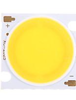 30W COB 2700-2900LM 3000K lumière blanche chaude Chip LED (30-34V, 600uA)