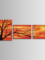 IARTS Oil Painting Modern Landscape Blooming Branches Flower Trees Set of 3 Hand Painted Canvas with Stretched Frame