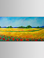 IARTS Oil Painting Modern Landscape Spring Field Hand Painted Canvas with Stretched Frame