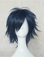 Top Quality Blue Cosplay Wig Synthetic Hair Wigs Man's Short Straight Animated Wigs Party Wigs