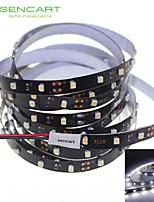 500cm 25W 300x3528SMD White / Cool White  Light LED Strip Lamp for Car (DC 12V)