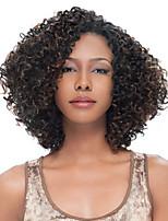 Human hair  lace wigs for  women Brazilian virgin hair Curly human hair color(#1 #1B #2 #4)