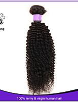 7A Grade Brazilian Virgin Hair Kinky Curly Hair Unprocessed Human Hair Brazilian Kinky Curly Virgin Hair