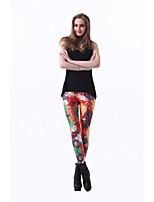 Women Print Legging , Spandex Medium