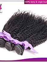 peruanische verworrenes lockiges reines Haar 3pcs / lot peruanischer reiner unverarbeitete Haar lockig weben für African American Frauen