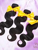 3Pcs Lot Brazilian Virgin Hair Body Wave Unprocessed Human Hair WoWigs Hair Brazilian Body Wave Shipping Free