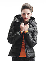 Women's Solid Black/Yellow Down Coat , Casual Long Sleeve