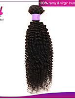 12-22 Inch Unprocessed Remy Brazilian Kinky Curly 100% Human Kinky Curly Hair Natural Black 100g