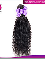 Malyasian Kinky Curly Hair Deep Curly Malaysian Hair 1pcs lot Malaysian Deep Wave Hair Malaysian Hair Bundles