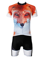 PaladinSport Men's  FOX Cycyling Jersey + Shorts  Bike Suits DT565