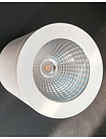 surface mounted down light, Spot light,Ceiling lamp