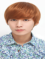 Handsome Wig Hair Han Edition Men's Wigs Boys Non-Mainstream Male Hair Fleeciness Realistic Wig Male Money Wholesale