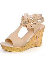Women's Shoes  Wedge Heel Wedges/Peep Toe/Platform/T-Strap Sandals Outdoor/Office & Career/Dress/Casual Multi-color