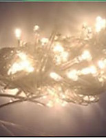 4W 10 Meter Long 100pcs LED String Light with AC110-220V Input PVC Transparent, Warm White Color