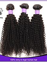Brazilian Kinky Curly Hair Deep Curly Brazilian Hair 3pcs lot Brazilian kinky curly Virgin Hair