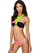 Women's Keep Young Contrast Color Neoprene Bikini Bottom