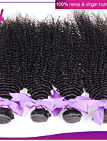Unprocessed Indian Kinky Curly Hair 4Pcs Lot 100% Virgin Human Hair Extensions Natural Black Color 12-22 Inches