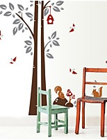 Under The Tree Squirrels Large Background Wall Stickers