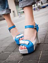 Women's Shoes  Chunky Heel Heels/Open Toe Sandals Dress Blue/Green/Red