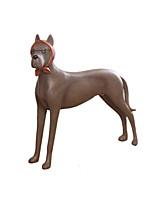 american whippet pays chien rurale verres articles d'ameublement de chien de génie chien
