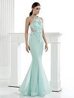동창회 TS 패션 공식적인 저녁 드레스 - 트럼펫 / 인어 높은 목 바닥 길이 얇은 명주 그물