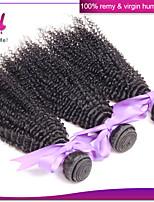 cheveux vierges 6a péruviens cheveux vierge profondes 3pcs bouclés frisés crépus péruviens vierge non traitée