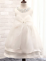 Flower Girl Dress - Mode de bal Longueur mollet Sans manches Coton/Tulle/Pailleté/Polyester