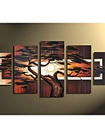Hand-painted Modern Landscape Oil Painting on Canvas Walls Art  Tree Pictures 5pcs/set No Frame