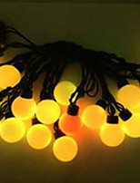 4W 5 Meter Outer Diameter 20pcs Bulb LED Modeling String Lights  Super Big Ball Lights, Warm White Color