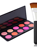 Pro Party 10 Colors Face Blush Blusher Powder Palette + Powder Brush