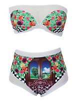 Women's Brazilian Fashion Sheer Print Tube Bikini Swimsuit