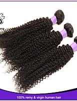 brazilian hair bundles afro kinky curly virgin hair wave 3pcs human hair extensions brazilian virgin hair