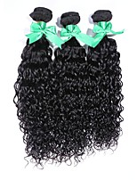 3Pcs/Lot Indian Virgin Hair 100% Peruvian Remy Hair Water Wave 8
