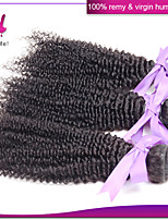 Indian Virgin Human Hair Weaves Unprocessed Kinky Curly Hair 12-22 Inches Natural Black Color
