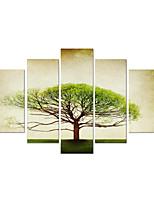 star®decorative visual estiró el arte moderno de la pared de la lona pintura al óleo del árbol listo para colgar