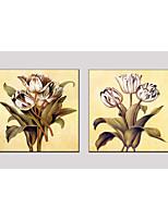 pittura ad olio set di 2 stile del fiore, materiale tela con telaio teso pronto da appendere formato: 70 * 70cm * 2 pezzi.