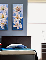 E-HOME® Stretched Canvas Art White Lily Decorative Painting Set of 2