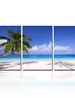 VISUAL STAR®Natural Blue Sky Canvas Printing Beach Landscape Picture On Canvas Ready to Hang
