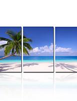 visivo star®natural cielo azzurro tela di stampa dell'immagine spiaggia paesaggio su tela pronti da appendere