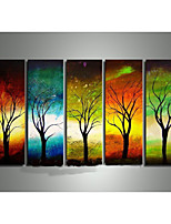 Hand-Painted Four Season Tree Oil Painting on Canvas  5pcs/set Without Frame