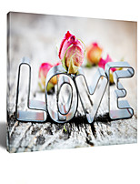VISUAL STAR® My Lost Happiness - Withered Roses LOVE Canvas Wall Art One Panel High Quality Canvas Ready to Hang