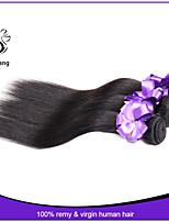 bon marché faisceaux de cheveux humains droites de cheveux raides malaisien 8