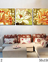 DIY Digital Oil Painting With Solid Wooden Frame Family Fun Painting All By Myself    The Knot 7012
