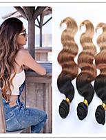 3Pcs/Lot Ombre Brazilian Hair Body Wawve Ombre Weave Hair Ombre Brazilian Hair Bundles #1b/4/27